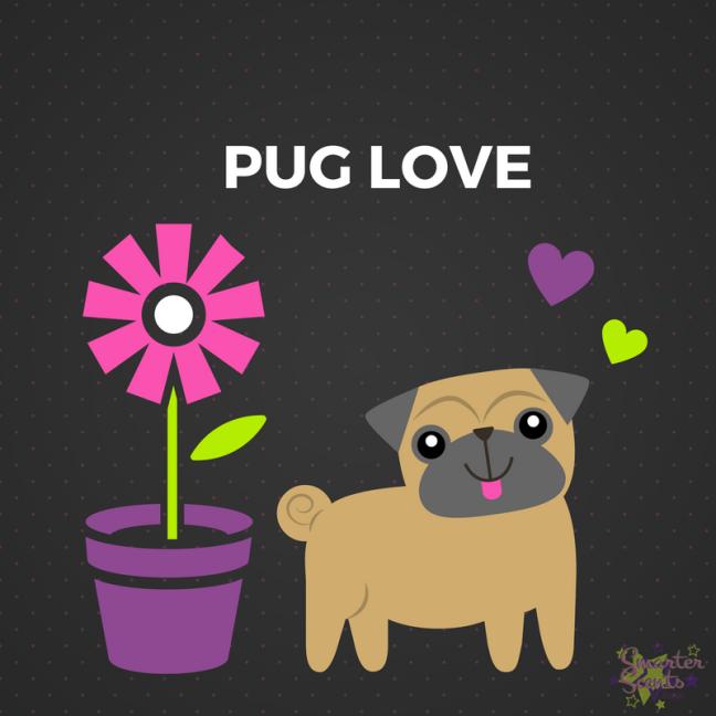 pugs, dogs, man's best friend, loyal, loving